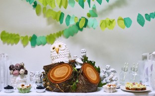 Nevie_pie_cakes_owl-party-dessert-table